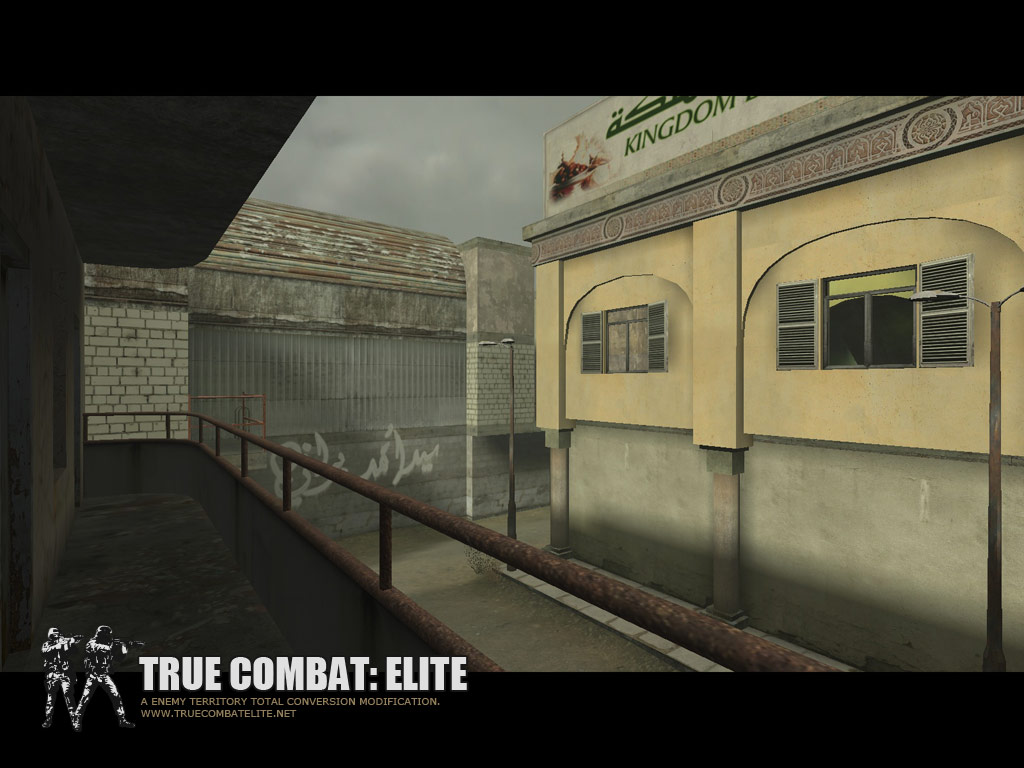 True Combat Elite - realistic street scene