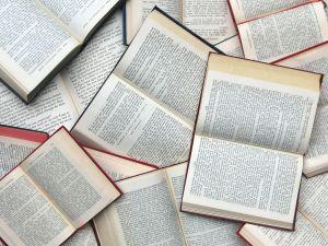 books, books by Sanja Gjenero