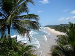 Beach by Darcy Toledo