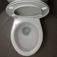 toilet by István Benedek
